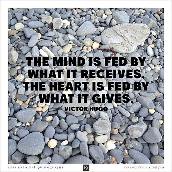 The mind is fed