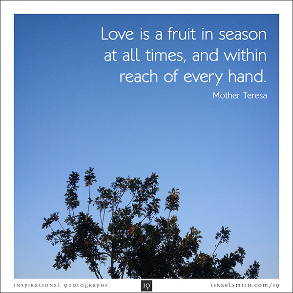 Love is a fruit in season