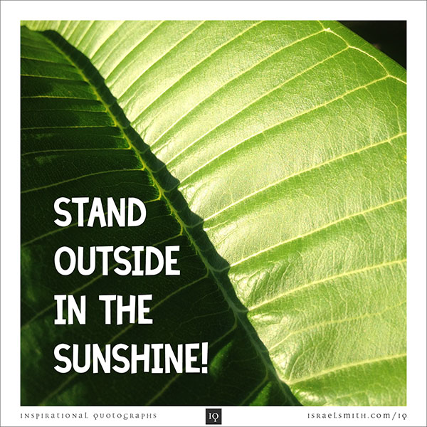 Stand outside
