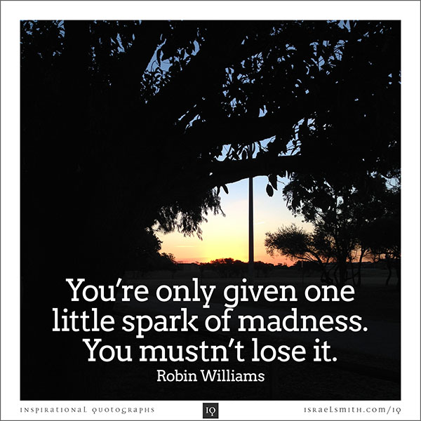 You're only given one little spark of madness