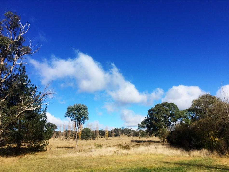 Beardy-Creek-Camp-Ground-Glen-Innes